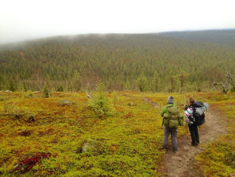 Forest fells outdoor expedition lapland