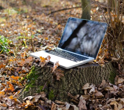 A laptop placed on a tree stump surrounded by leaves.